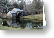 Most Photographed Photo Greeting Cards - Southern Appeal Greeting Card by Shannon Slaydon