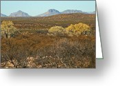 Elizabeth Rose Greeting Cards - Southern Arizona Landscape Greeting Card by Elizabeth Rose