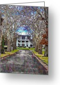 Tree-lined Greeting Cards - Southern Gothic Greeting Card by Bill Cannon