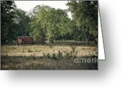 Jonah Photo Greeting Cards - Southern Hideaway Greeting Card by Brad Leese
