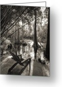 Sepia Greeting Cards - Southern Living Greeting Card by Dustin K Ryan
