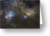Molecular Clouds Greeting Cards - Southern Seagull Nebula Greeting Card by Don Goldman