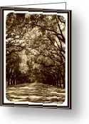 Tans Greeting Cards - Southern Welcome in Sepia Greeting Card by Carol Groenen