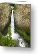 Gray Greeting Cards - Spahats Falls waterfall in Wells Gray Provincial Park Greeting Card by Elena Elisseeva