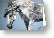 Melita Greeting Cards - Spanish horse Greeting Card by Melita Safran