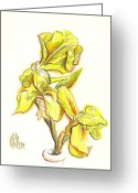 Yellow Drawings Greeting Cards - Spanish Irises Greeting Card by Kip DeVore