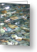 Abstract Nature Greeting Cards - Sparkling Water on Rocky Creek Greeting Card by Carol Groenen