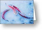 Ronnie Glover Greeting Cards - Spawning Greeting Card by Ronnie Glover