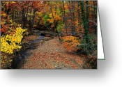 Ohio Country Greeting Cards - Spectrum of Color Greeting Card by Robert Harmon