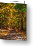 Autumn Art Greeting Cards - Speechless Greeting Card by Robert Pearson