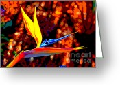 Plant Nursery Greeting Cards - Spicy Bird of Paradise Greeting Card by Jim Carrell