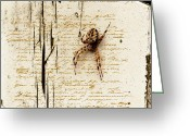 Ym_art Greeting Cards - Spider Letter Greeting Card by Yvon -aka- Yanieck  Mariani