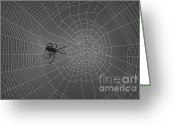 Gray Greeting Cards - Spider Web With Spider No. 2 Greeting Card by Dave Gordon