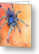 Blue Blood Greeting Cards - Spidy Greeting Card by Tracy L Teeter