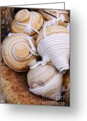 Handicraft Greeting Cards - Spinning Tops Greeting Card by Carlos Caetano