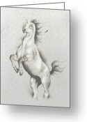 Wild Horse Greeting Cards - Spirit Horse Greeting Card by Robert Martinez