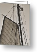 Historic Lighthouse Greeting Cards - Spirit of South Carolina Schooner Sailboat Sail Greeting Card by Dustin K Ryan