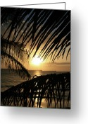 The Nature Of Sunsets Greeting Cards - Spirit of the Dance Greeting Card by Sharon Mau