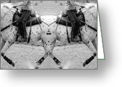 Dressage Digital Art Greeting Cards - Split  Greeting Card by East Coast Barrier Islands Betsy A Cutler