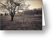 Battleground Greeting Cards - Spotsylvania Battlefield Greeting Card by Harry H Hicklin