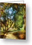 Direction Greeting Cards - Spring - Landscape - My Journey My Path Greeting Card by Mike Savad