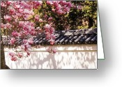 Oriental Flower Greeting Cards - Spring - Magnolia Greeting Card by Mike Savad