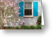 Magnolia Greeting Cards - Spring - Spring Window Greeting Card by Mike Savad