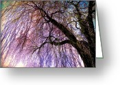 Landscape Framed Prints Greeting Cards - Spring Greeting Card by Alex Tavshunsky