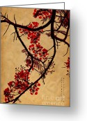 Exotic Tree Flowers Greeting Cards - Spring Bloosom in Maldives. Flamboyant Tree I.  Japanese Style Greeting Card by Jenny Rainbow