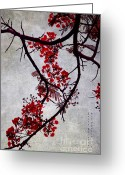 Exotic Tree Flowers Greeting Cards - Spring Bloosom in Maldives. Flamboyant Tree II. Japanese Style Greeting Card by Jenny Rainbow