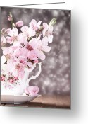 Teacup Greeting Cards - Spring Blossom Greeting Card by Christopher Elwell and Amanda Haselock