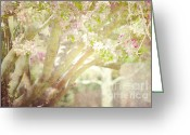 Winter Photos Greeting Cards - Spring Blossoms Greeting Card by Andrea Hazel Ihlefeld