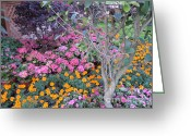 Lam Lam Greeting Cards - Spring Blossoms Symphony Greeting Card by Lam Lam