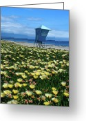 Landscape Greeting Cards Greeting Cards - Spring Break Santa Barbara Greeting Card by Kathy Yates