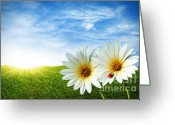 Heavens Greeting Cards - Spring Greeting Card by Carlos Caetano