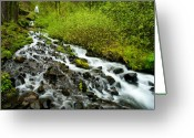 Cascades Greeting Cards - Spring Cascades Greeting Card by Mike  Dawson