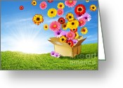 Delivery Greeting Cards - Spring Delivery Greeting Card by Carlos Caetano