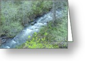 Natures Beauty Greeting Cards - Spring Flow Greeting Card by Idaho Scenic Images Linda Lantzy
