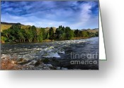 River Flooding Greeting Cards - Spring Flow Greeting Card by Robert Bales