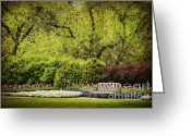 Empty Park Bench Greeting Cards - Spring Garden Greeting Card by Cheryl Davis