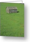 Spring Scenes Greeting Cards - Spring Greenery And A Wooden Barn Greeting Card by Rich Reid