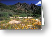 Featured Artwork Prints Greeting Cards - Spring in the Pinnacles Greeting Card by Kathy Yates