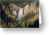 Lower Yellowstone Falls Greeting Cards - Spring Morning at Yellowstone Falls Greeting Card by Greg Nyquist