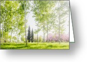 Spring Time Greeting Cards - Spring Park Greeting Card by Evgeni Dinev