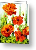 Watercolor Greeting Cards - Spring Poppies Greeting Card by Janis Grau