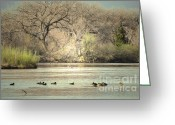 Winter Photos Greeting Cards - Spring River Greeting Card by Andrea Hazel Ihlefeld