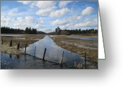 Photograpg Greeting Cards - Spring Runoff Greeting Card by Ida Brown