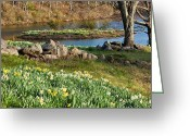 Scenic New England Greeting Cards - Spring Serenity Greeting Card by Bill  Wakeley