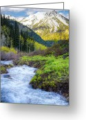Forested Greeting Cards - Spring Snow Melt Wasatch Mountains Utah Greeting Card by Utah Images