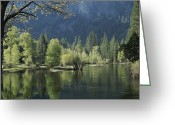 Spring Scenes Greeting Cards - Spring View Of The Merced River Greeting Card by Marc Moritsch